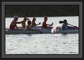 Image of Ryan paddling with some of the younger athletes of the Pisiquid Canoe Club